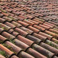 Pokrycia dachowe i panelowe – jakie wybrać?